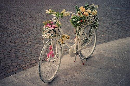 cicekli-sirin-bisiklet
